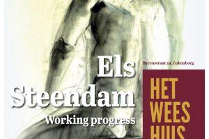 Els Steendam_progress